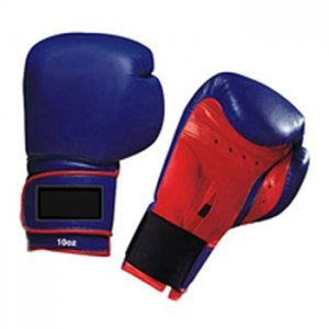 Blue Boxing Glove WI-5236
