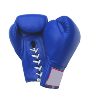 Boxing Gloves WI-1355