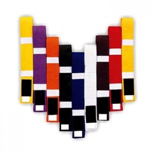Colored Belts in 100% cotton