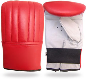 Punching Mitts with Elastic Closing