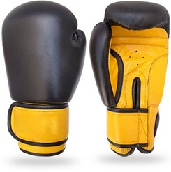 Boxing Gloves WI-1348