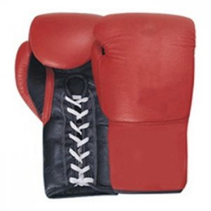 BOXING GLOVES WI-1074